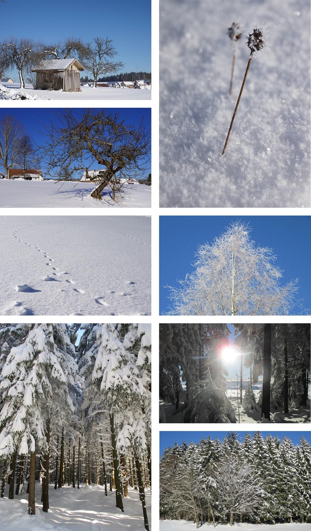 richtiger Schnee